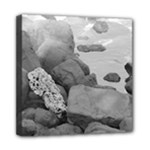 coral bw - Mini Canvas 8  x 8  (Stretched)