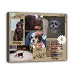 our pets - Canvas 10  x 8  (Stretched)