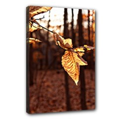 leaf - Canvas 18  x 12  (Stretched)