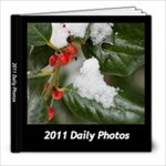2011 Daily Photo - 8x8 Photo Book (60 pages)