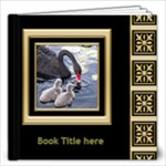 Black and Gold 12x12 Book (40 Pages) - 12x12 Photo Book (20 pages)