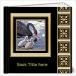 Black and Gold 12x12 Book (20 Pages) - 12x12 Photo Book (20 pages)