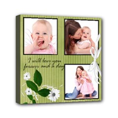 Willow - Mini Canvas 6x6 Stretched  - Mini Canvas 6  x 6  (Stretched)