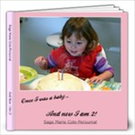 2012 Sage s 2nd Birthday Book - 12x12 Photo Book (20 pages)