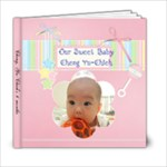 6 month path - 6x6 Photo Book (20 pages)