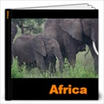 AFRICA - 12x12 Photo Book (20 pages)