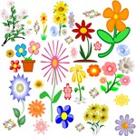 Floral Flower Designs and Photos