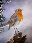 Robin Winter Scene