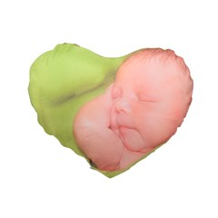 Standard 16  Premium Heart Shape Cushions Icon