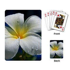 Frangipani Tropical Flower Standard Playing Cards