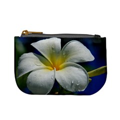 Frangipani Tropical Flower Coin Change Purse by Koalasandkangasplus