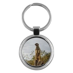 Meerkat, Key Chain (Round) by TimeBomb