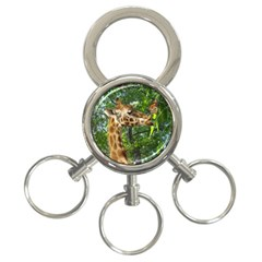 Giraffe Kissing Butterfly, 3-Ring Key Chain by TimeBomb