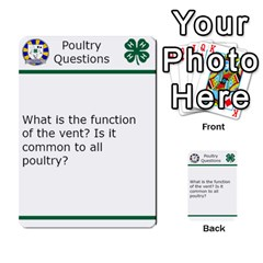 Poultry Question Cards By Lmw   Multi Purpose Cards (rectangle)   4zo8denyjrd7   Www Artscow Com Front 1