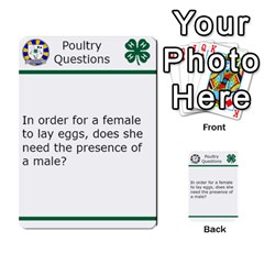 Poultry Question Cards By Lmw   Multi Purpose Cards (rectangle)   4zo8denyjrd7   Www Artscow Com Front 2
