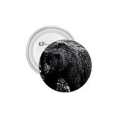 Vintage Usa Alaska Brown Bear 1970 Small Button (round) by Vintagephotos