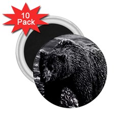 Vintage Usa Alaska Brown Bear 1970 10 Pack Regular Magnet (round)