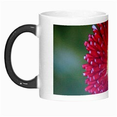 Red Flower Morph Mug by ILPADRINO810