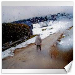 Rainy Day, Austria 20  X 20  Unframed Canvas Print