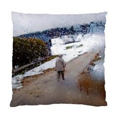 Rainy Day, Salzburg Twin Sided Cushion Case