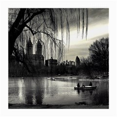 Central Park, New York Twin-sided Large Glasses Cleaning Cloth by artposters