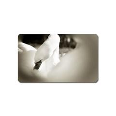 Swan Name Card Sticker Magnet
