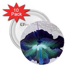 Exotic Hybiscus   10 Pack Regular Button (round) by dawnsebaughinc