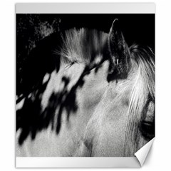 Horse 20  X 24  Unframed Canvas Print