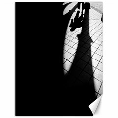 Shadows 12  X 16  Unframed Canvas Print