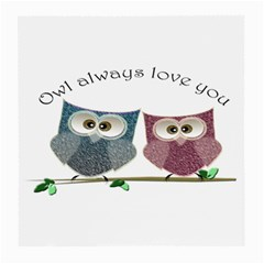 Owl Always Love You, Cute Owls Twin Sided Large Glasses Cleaning Cloth by DigitalArtDesgins