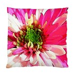 Pink and White Pillow - Cushion Case (One Side)