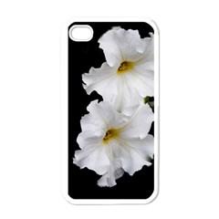 White Peonies   White Apple Iphone 4 Case by Elanga