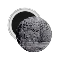 Black and White Forest Regular Magnet (Round) by Elanga