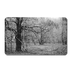Black And White Forest Large Sticker Magnet (rectangle) by Elanga