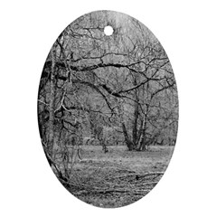 Black And White Forest Oval Ornament (two Sides) by Elanga