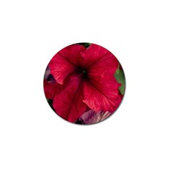 Red Peonies 10 Pack Golf Ball Marker by Elanga