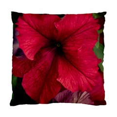 Red Peonies Twin Sided Cushion Case by Elanga