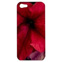 Red Peonies Apple Iphone 5 Hardshell Case