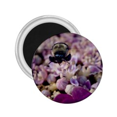 Flying Bumble Bee Regular Magnet (round) by Elanga