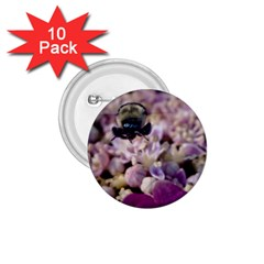 Flying Bumble Bee 10 Pack Small Button (round) by Elanga