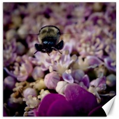 Flying Bumble Bee 12  X 12  Unframed Canvas Print by Elanga