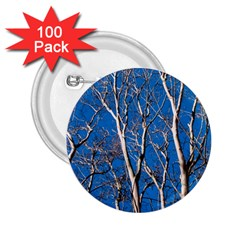 Trees On Blue Sky 100 Pack Regular Button (round) by Elanga