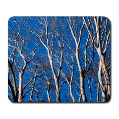 Trees On Blue Sky Large Mouse Pad (rectangle) by Elanga