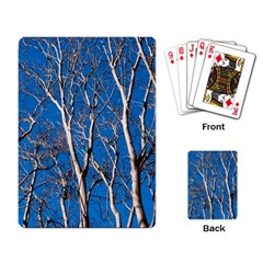 Trees On Blue Sky Standard Playing Cards by Elanga