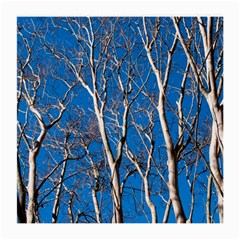 Trees On Blue Sky Twin Sided Large Glasses Cleaning Cloth