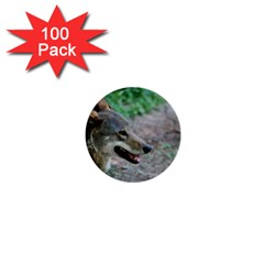 Red Wolf 1  Mini Button (100 Pack) by AnimalLover