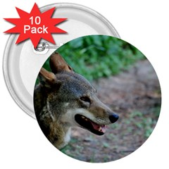 Red Wolf 3  Button (10 Pack) by AnimalLover