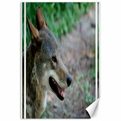 Red Wolf Canvas 12  X 18  (unframed) by AnimalLover