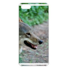 Red Wolf Apple Iphone 5 Seamless Case (white) by AnimalLover