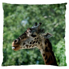 Cute Giraffe Large Cushion Case (One Side) by AnimalLover